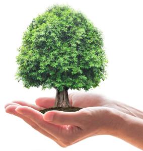 stofix-zorgt-voor-duurzaamheid